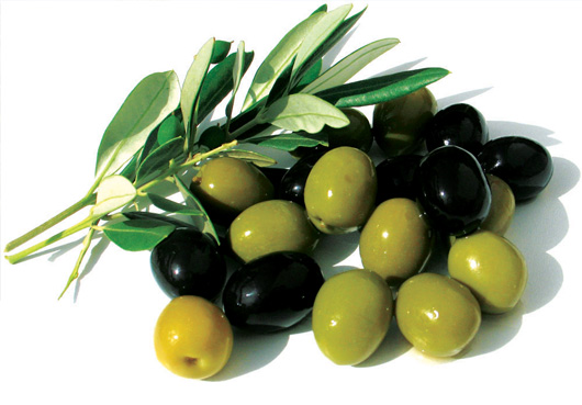 Myths and facts about the olive tree #1